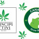 principi attivi cannabis light