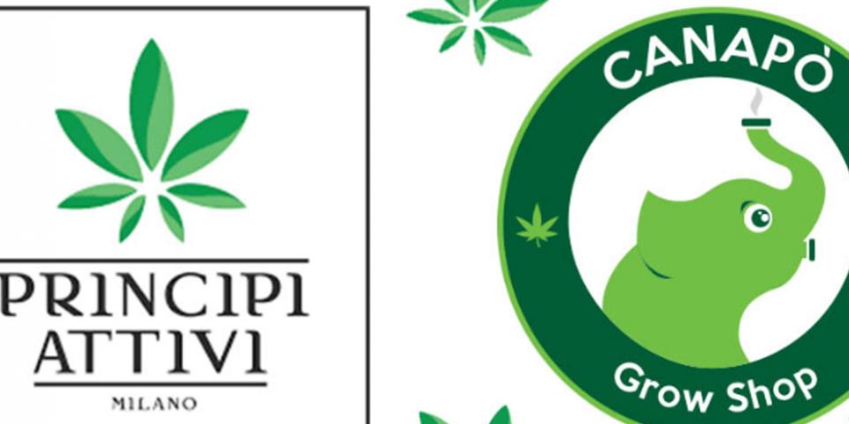 principi attivi cannabis light