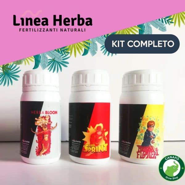 linea herba kit
