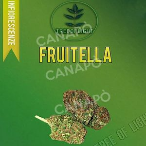 fruitella cannabis light