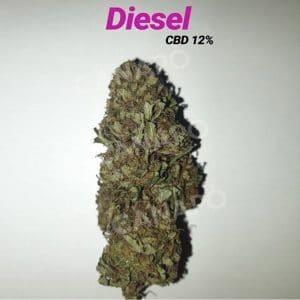 diesel cannabis light