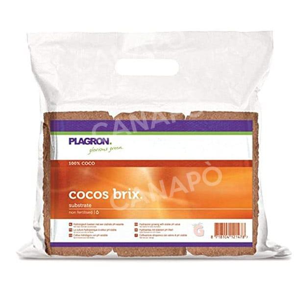 cocos brix plagron