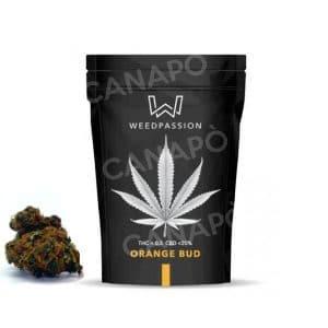 orange bud cbd weedpassion