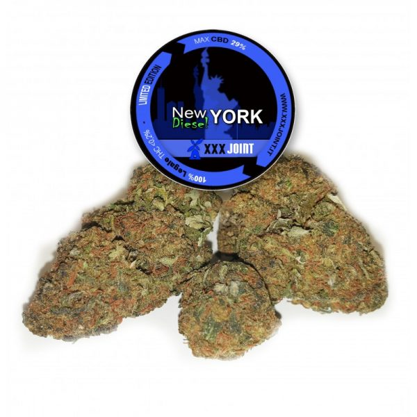 new york diesel canapa legale