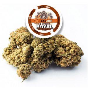 royal cheese canapa legale