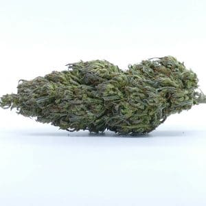 biscotti cbd cannabis light