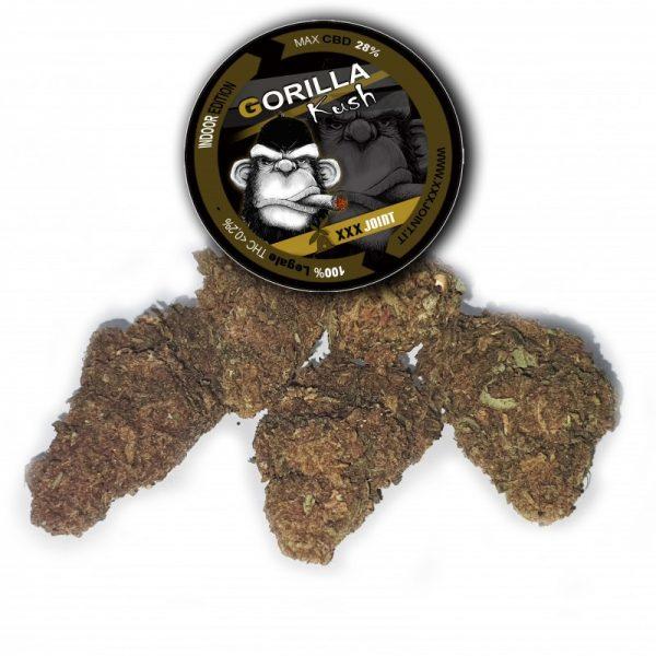 gorilla kush cbd infiorescenze