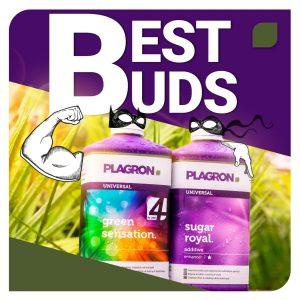 promo plagron offerta best buds