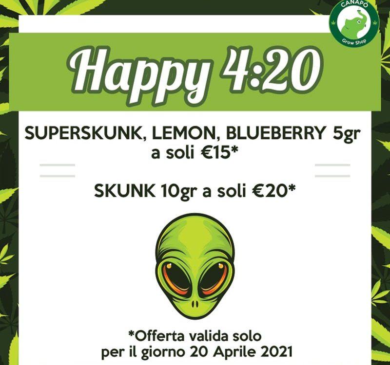 offerte 420