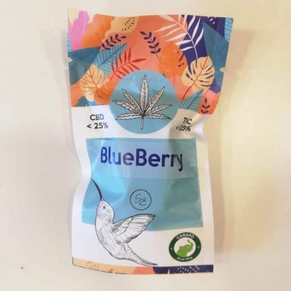 blueberry cbd cannabis light