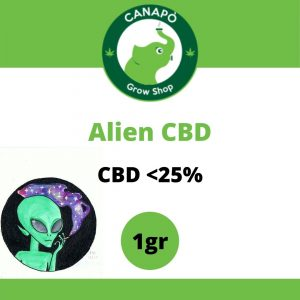 alien cbd cannabis light