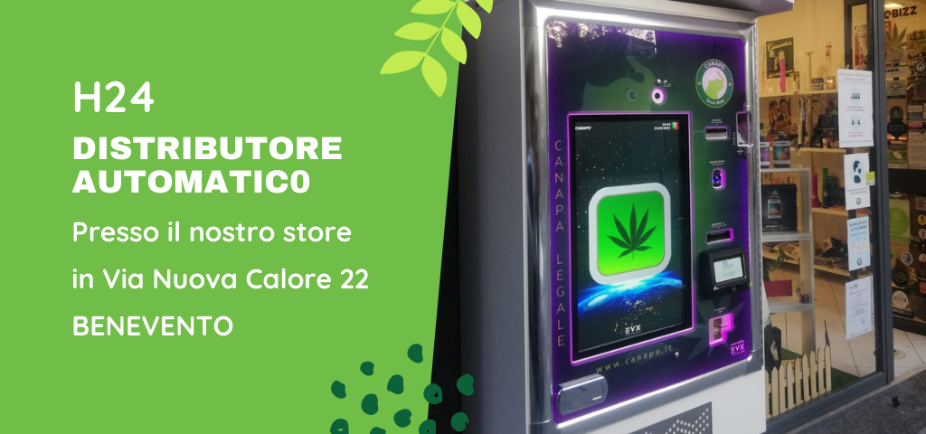 distributore automatico cannabis light benevento cbd canapo
