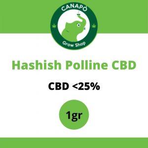hash polline cbd legal hash