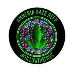amnesia haze zanza brew logo